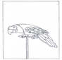 Papagaio 3