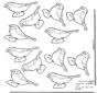Pássaros móveis 4