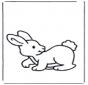 Pequeno coelho 2