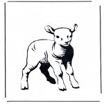Animais - Pequeno cordeiro 2