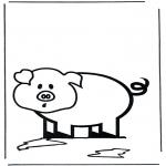 Animais - Pequeno porco