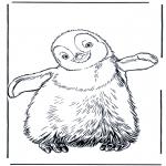 Animais - Pinguin 3