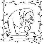 Animais - Pinguin 5