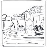 Animais - Pinguins 1