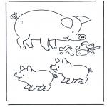 Animais - Porco 1