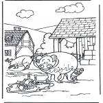 Animais - Porcos 3