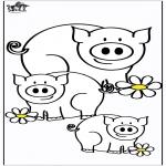 Animais - Porcos 4