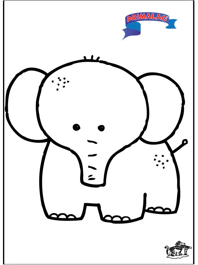 Primalac - elefante - Animais