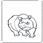 Animais - Rinoceronte