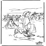 Pinturas bibel - Rute 2
