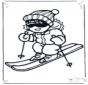 Ski divertido