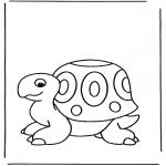 Animais - Tartaruga