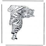 Animais - Tigre