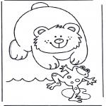 Animais - Urso e sapo