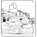 Animais - Urso polar e leão marinho