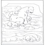 Animais - Urso polar