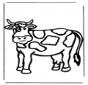 Vaca 3