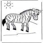 Animais - Zebra
